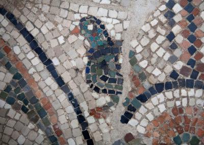 cripta-rasponi-particolare-pavimento-musivo-san-severo-2